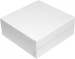 dortova-krabice-25-x-25-x-10-cm-50-ks-10496.jpg